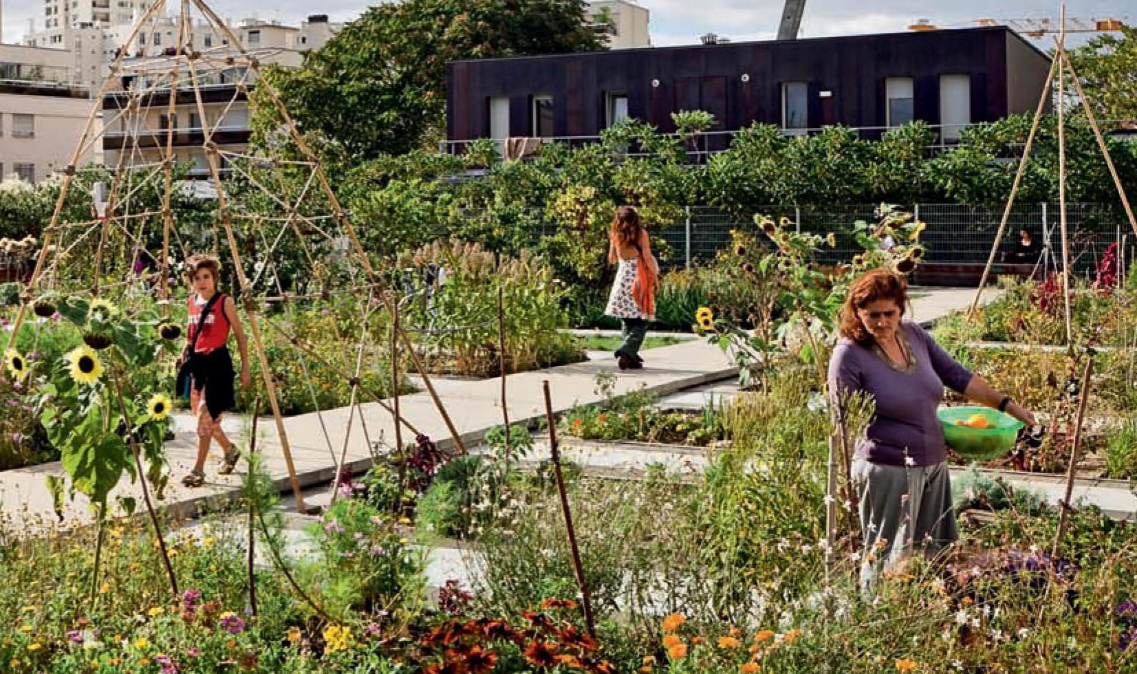 Le jardin sur le toit rue des vignoles est dans le dernier for Jardin sur le toit